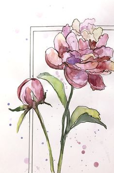 Excited to share this item from my shop: Watercolor peonies Watercolor original floral watercolor fine art wall decor pink flowers living room wall art floral original art OOAK Watercolor And Ink, Watercolor Tattoos, Watercolor Ideas, Abstract Watercolor, Watercolor Flowers Tutorial, Watercolour Flowers, Orchid Drawing, Peony Illustration, Peony Painting