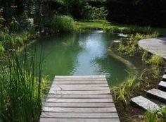 een zwemvijver van www.ecoworks.be