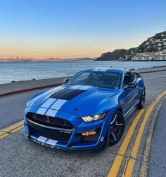 Ford Mustang Shelby, Shelby Gt500, Mustang Cars, Best Jdm Cars, Moto Car, Gas Monkey Garage, Top Luxury Cars, Street Racing Cars, Dream Cars
