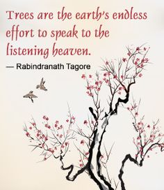 Rabindranath Tagore quote
