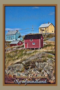 Daily rediscovered Newfoundland and Labrador pictures from the archives Newfoundland Canada, Newfoundland And Labrador, Art Prints For Sale, Canada Travel, Travel Pictures, Islands, Travel Photography, Beautiful Places, Houses