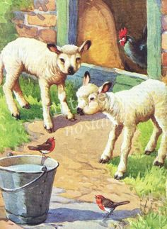 Vintage farmyard illustration