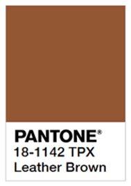 24 Best Brown Pantone Images Brown Aesthetic Beige