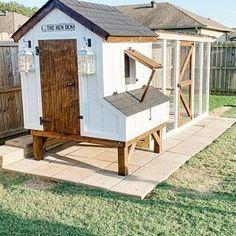Chicken Coop Designs, Cute Chicken Coops, Chicken Coop Run, Diy Chicken Coop Plans, Chicken Coup, Chicken Garden, Backyard Chicken Coops, Chicken Runs, Chickens Backyard