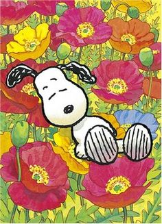 *SnoopyMania*