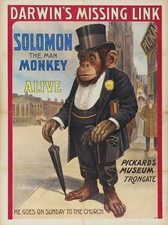 Solomon_monkey-circus_poster.jpg 261×350 pixels