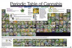 Układ+Okresowy+Marihuany+-+plakat