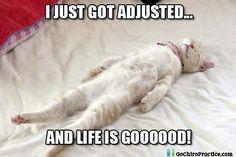 Just got adjusted...and life is good!  -Old Bridge Spine and Wellness www.oldbridgespine.com