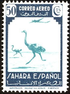 Common Ostrich stamps - mainly images - gallery format