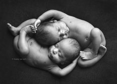 newborn photographer, twin babies posing