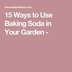 15 Ways to Use Baking Soda in Your Garden -