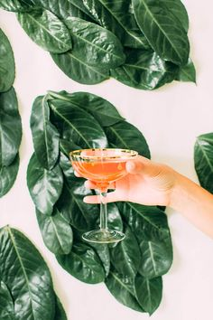 A Summer Botanicals Cocktail Party (With Recipes