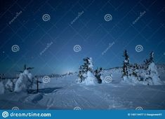 Photo about Nightsky on hedmarksvidda Hedmark county Norway. Snowy winter landscape under the clear starry sky. Trees covered in snow. Image of norway, hedmarksvidda, snow - 140114477 Night Skies, Free Stock Photos, Winter Wonderland, Norway, Trees, Snow, Illustration, Nature, Naturaleza