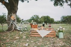 Wedding proposal, picnic pedida de mano vermut inspiration vintage bicycle