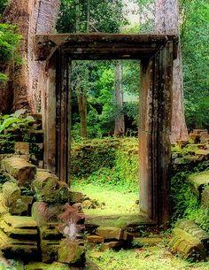 thebeldam:  The Door  A door amidst the ruins near Bayon