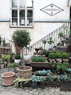 Stylizimo | Stylizimo´s Gothenburg guide