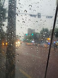 비오는날의 외출