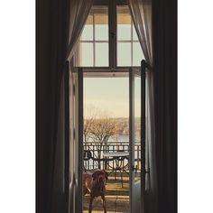 #arrived at the #lakehouse  #sandorthevizsla #weekend #outoftown #nature #vizslasofinstagram #lake #roomwithaview