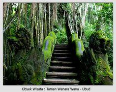 Bali, Ubud monkey Forest
