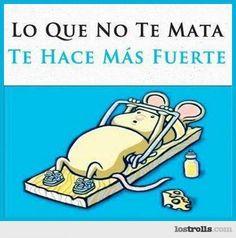 FRASE GRACIOSA: RATÓN EN ACCIÓN  It's in Spanish but remember the Nolan cheese commercial??!! SERIOUSLY STRONG