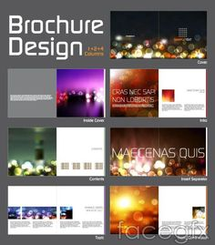 Booklets and plate-layout magazine vector