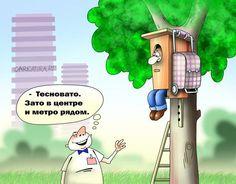 Карикатуры №290114 » RadioNetPlus.ru развлекательный портал