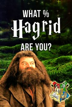 Hogwarts Quiz: How Hagrid are you? Find out with this quiz! Harry Potter DNA test. Answer these questions to find out if you're just like the Keeper of Keys and Grounds at Hogwarts! #hagrid #potterhead #harrypotterquiz