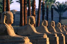 Avenues of Sphinxes in Luxor, Egypt..when I was here you were never believe you were in the African continent but a cultural Arab country..but felt in a different time...