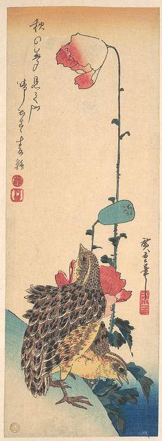 Quails and Poppies  Utagawa Hiroshige  (Japanese, 1797–1858)