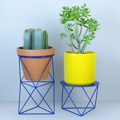 Eric Trine Plant Stands