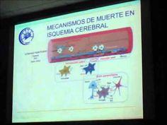 Muerte neuronal y neuroprotección