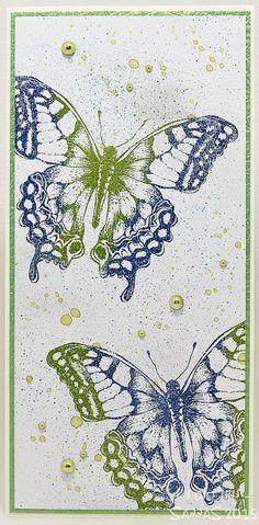 cabinet perhosia...