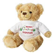 Teddy Bear with Personalised Jumper - Merry Christmas Christmas Teddy Bear, 1st Christmas, Christmas Gifts, Gin, Personalised Teddy Bears, Person Cartoon, Cartoon Flowers, Love Monster, Valentines Day Birthday