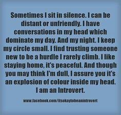 Im an introvert