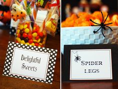 """""""Spider Legs"""""""