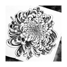 Beautiful floral drawing by if you would like to be featured Sponsored posts on request, please contact… Tattoo Sleeve Designs, Sleeve Tattoos, Tattoo Ink, Blue Tattoo, Chrysanthemum Drawing, Chrysanthemum Flower, Maybelline Matte Ink, Maybelline Superstay, Japanese Flower Tattoo