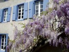 French Holidays Aude | A large self catering gite near to Castelnaudary and the Canal Du Midi