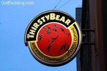 Review of the Thirsty Bear, San Francisco, CA