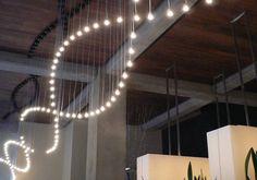 The Light Corporation: - Portfolio