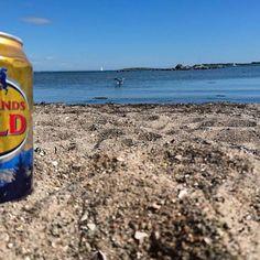 BEACH, BEER & BBQ! ☀ #beach #beer #bbq #sun #sunshine #sweden #instapassport #instatravel #instagram #instashot #travel #traveling #travelling #traveller #solotraveller #solotravel #femaletravelers #femaletraveler #backpacking #wanderlust #fernweh #discover #explore #worldtravel #travelblog World Traveler, Solo Travel, Backpacking, Sweden, Travelling, Bbq, Sunshine, Wanderlust, Explore