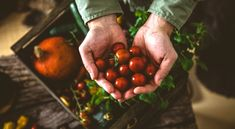 Mit mikor szüreteljünk? - Szakértői tanácsok mindenkinek! Organic Vegetables, Fruits And Veggies, Best Fiber Supplement, Fiber Rich Foods, Agriculture Biologique, Food Stamps, Balanced Diet, Health And Nutrition, Gut Health