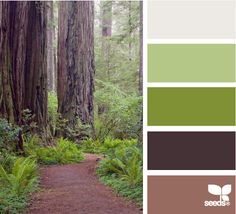 """wooded hues"" ...  being that I am a tree hugger, is this not a perfect color palette for me?"