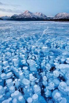 Het Canadese Abraham Lake, waar de talloze bubbels methaangas die vrijkomen uit de bodem 's winters geen kant op kunnen onder het dikke ijs.