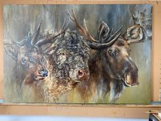XL Canvas Prints are here ${contact.Name.First}! Large Canvas Prints, Canvas Art, Classical Art, Wildlife Art, Moose Art, Fine Art, Animals, Animales, Animaux