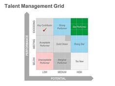 Performance Matrix for Talent Management