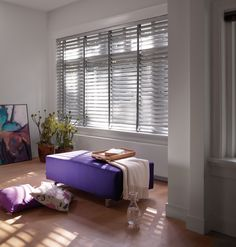 Apollo Venetian Blinds