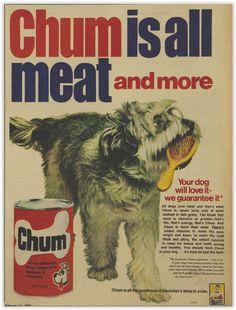 Chum Dog Food Magazine Advertisement Ad February 1970 Vintage Retro
