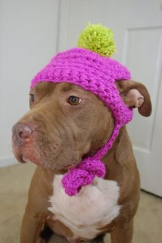 Dog Hat Crochet Hot Pink with Green Pom Pom by courtanai on Etsy, $25.00