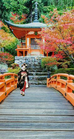 Daigo-ji Templo Meishin Way Japón Kyoto