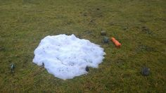 These freeze- thaw cycles have been especially hard for our local snowmen...